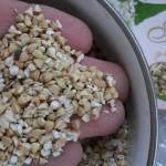 Зерна сырой гречки
