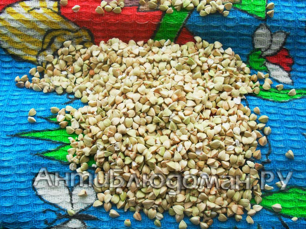 Зеленая гречка - новый урожай